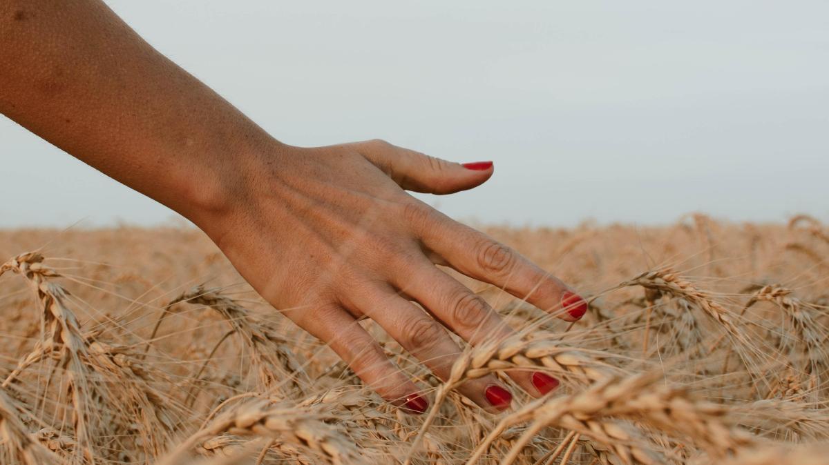 Manirua clásica en rojo / Foto: Unsplash