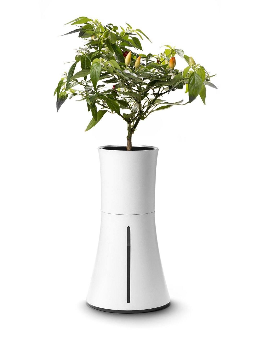 Jardinera inteligente/Foto: Botanium