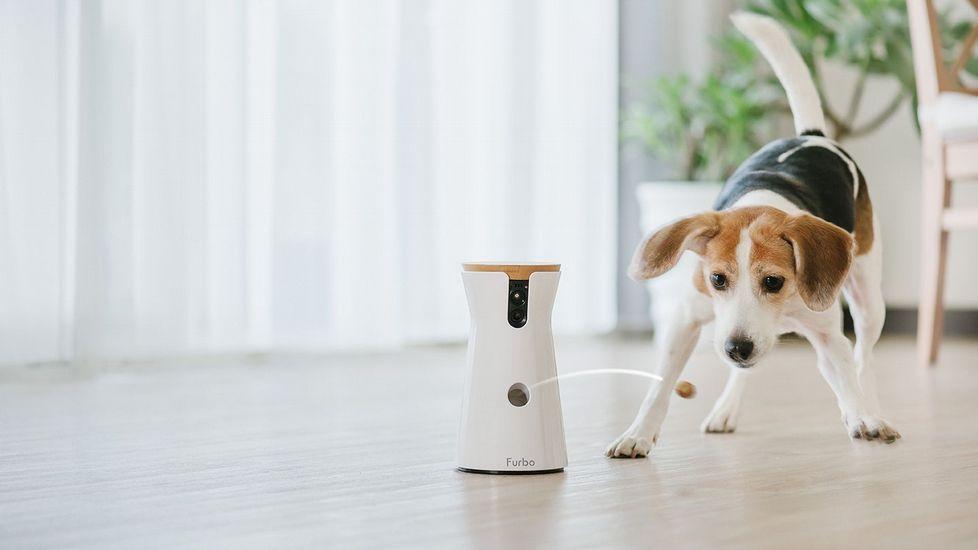 La cámara para controlar a tu mascota/Foto: Tomofun