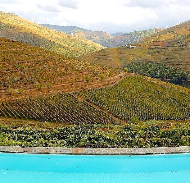 Piscina y zona de los viñedos / Foto: Quinta Nova