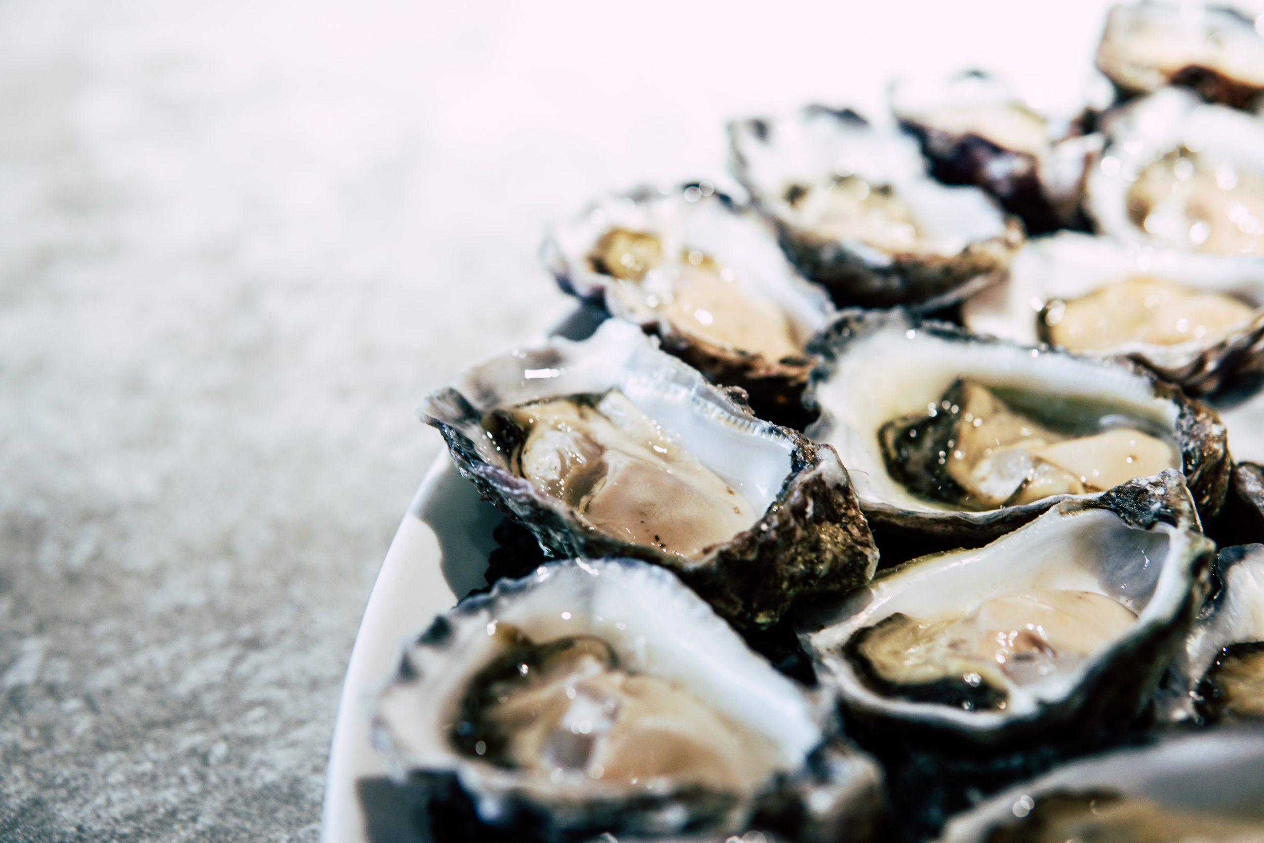 Platos de ostras. /Foto: Pexels