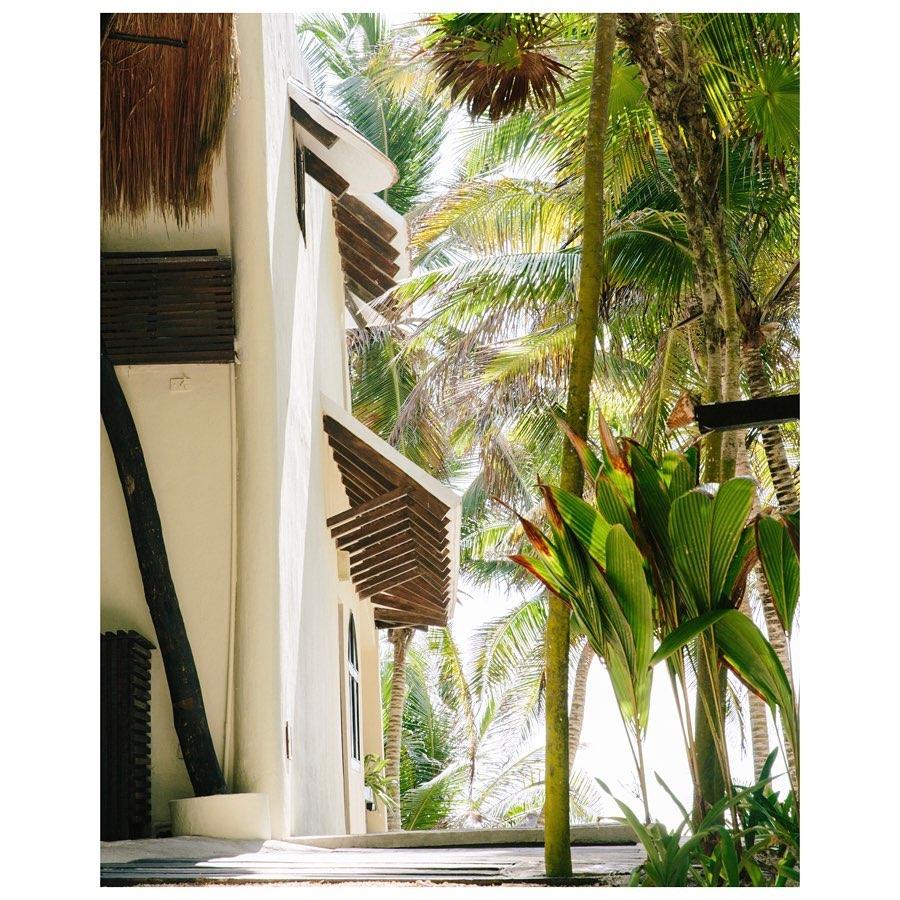 Exterior del hotel / Foto: Olas Tulum