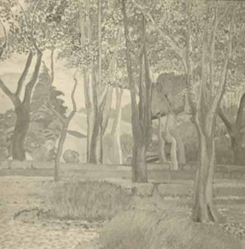 Almeses del Botánico, 1923