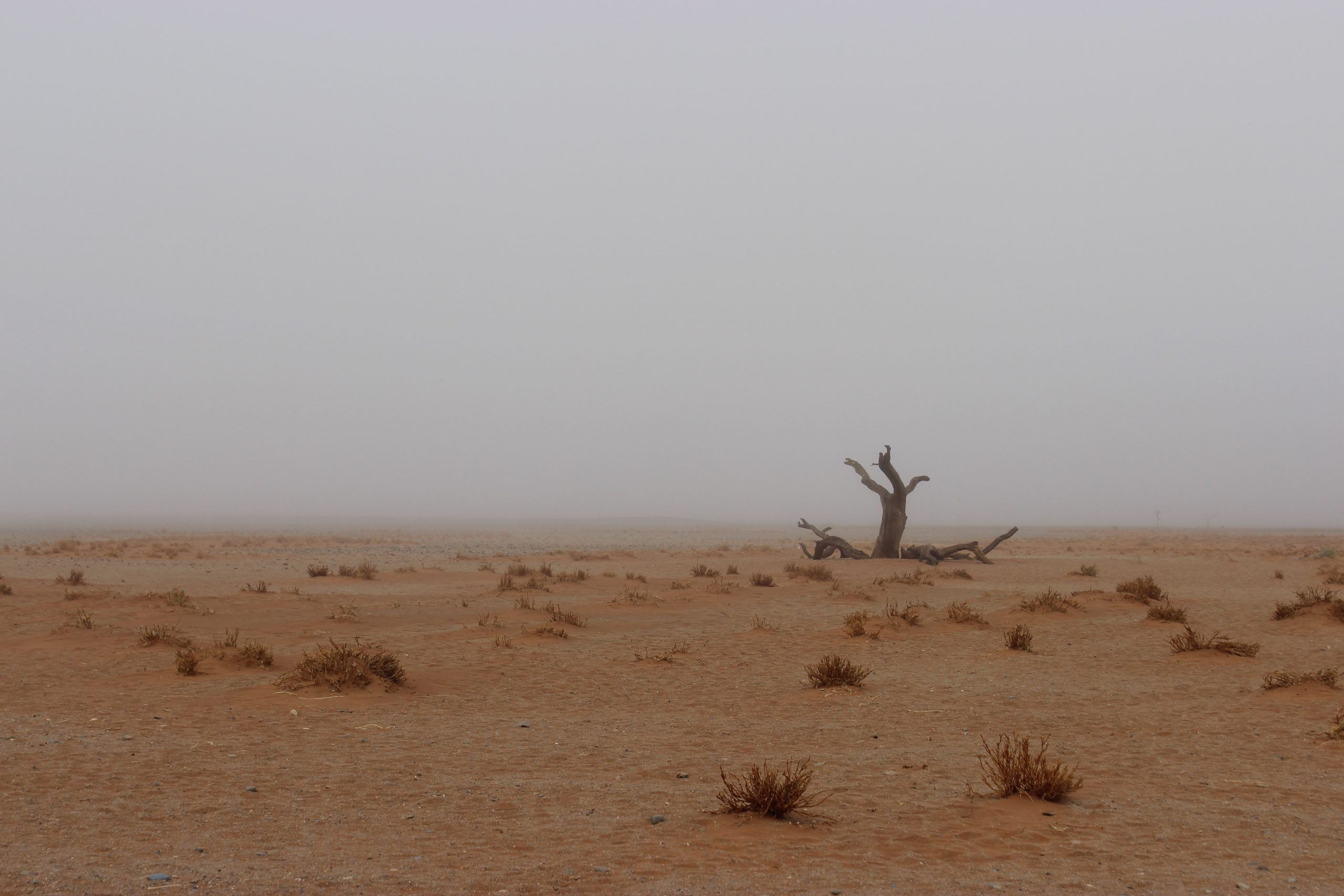 Parque Nacional Namib-Naukluft, en Namibia