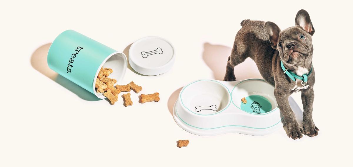 Accesorios de Tiffany para perros