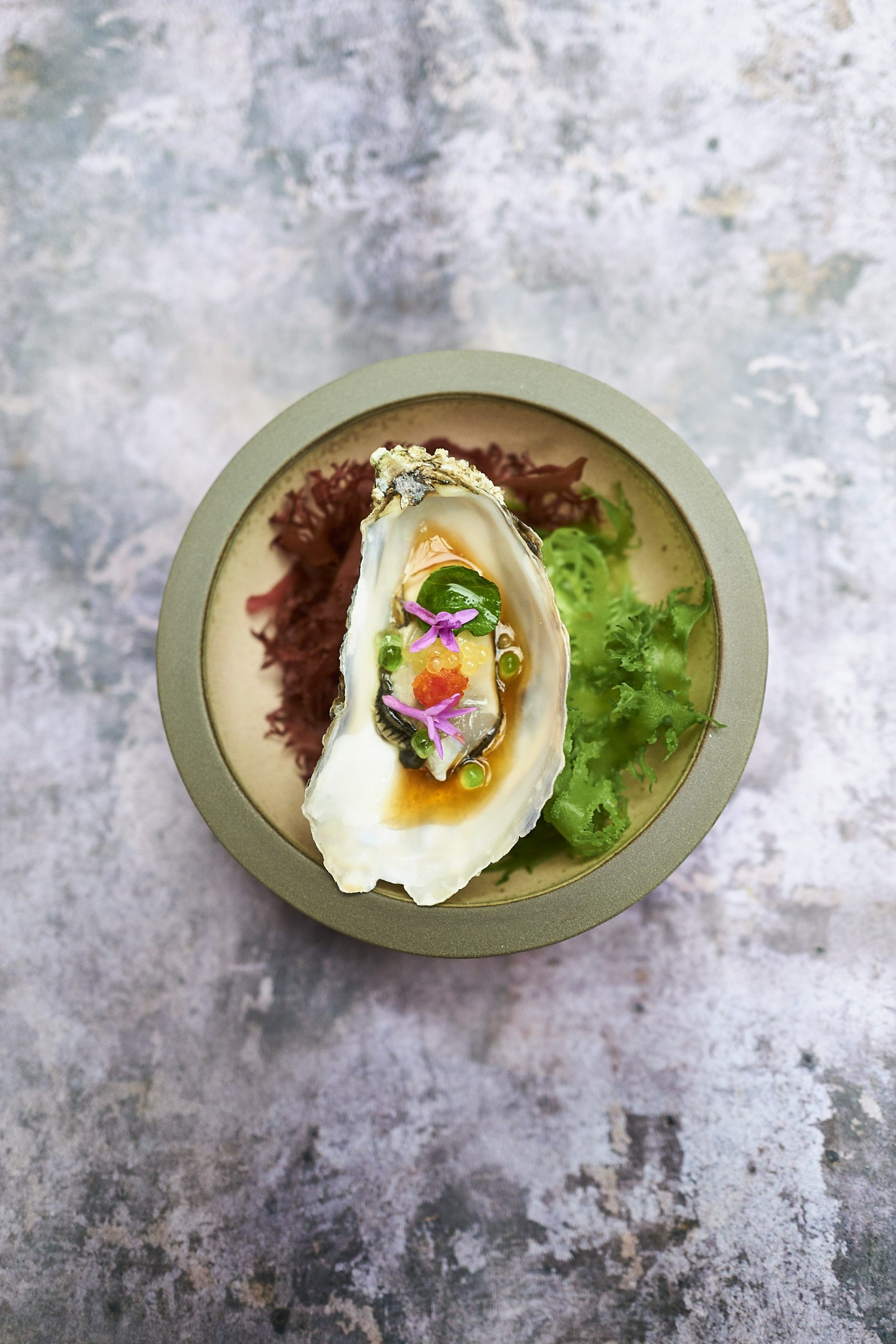 Ostra de Dinings / Foto: Dininigs