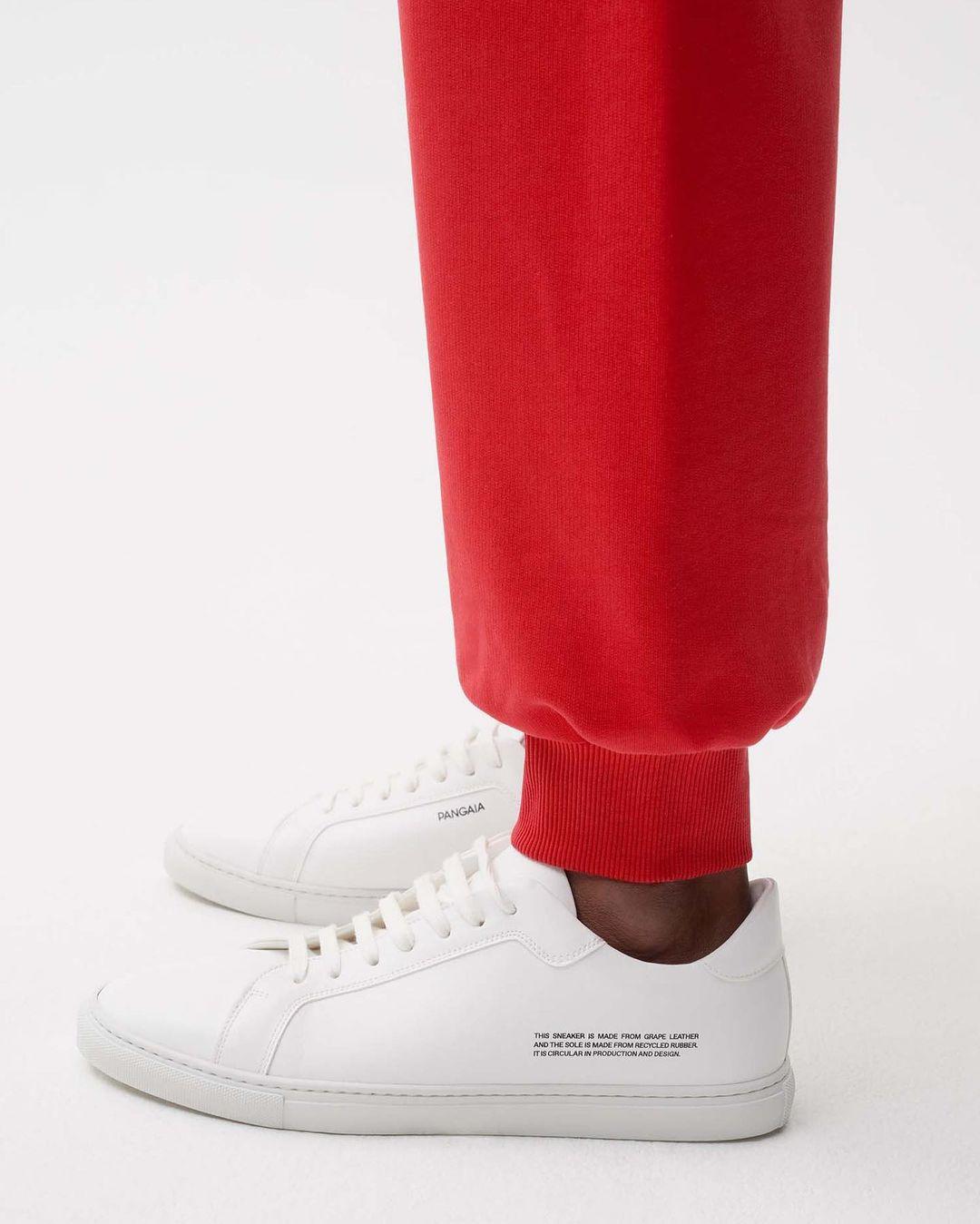 Sneakers The Pangaia
