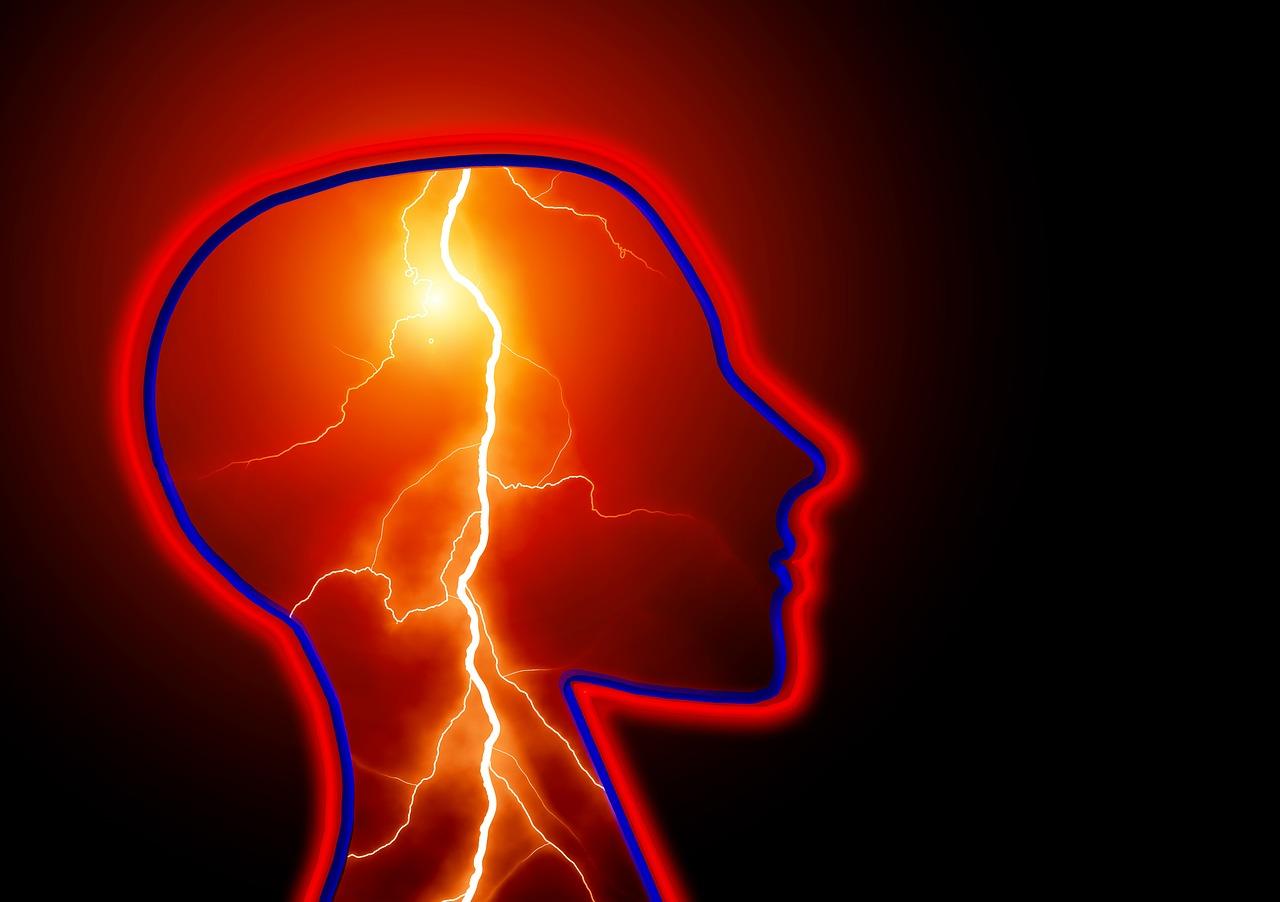 Tu cerebro desde dentro, por Carlos Pérez-Carracedo