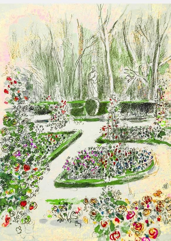 Dibujo de la Rosaleda del Real Jardín Botánico de Madrid