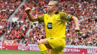 Haaland celebra uno de sus goles al Bayer. (AFP)