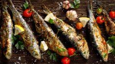 Receta de sardinas marinadas con queso y confitura de tomate