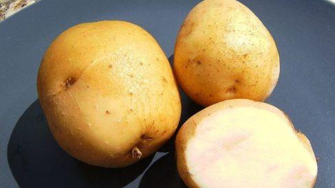 Incorporar la patata en nuestra dieta semanal es algo saludable.