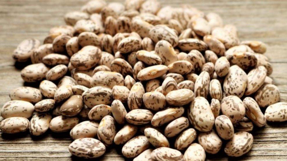Las legumbres suelen darnos energía, nos sacian, reducen el colesterol…