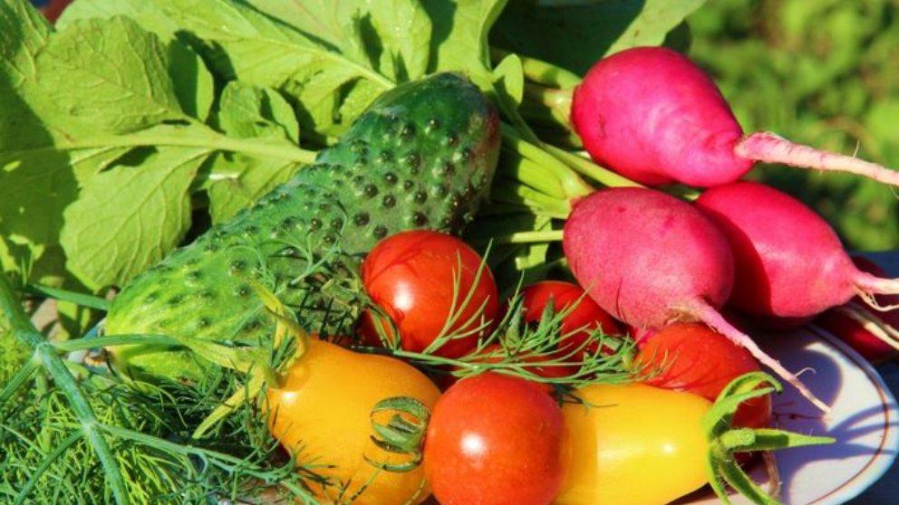 Tanto las frutas como las verduras son ya sanas y deben consumirse a diario.