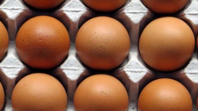 Huevo: beneficios, características y todo lo que tienes que saber sobre este alimento