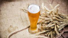 Cerveza de trigo de la Abadía