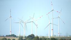 Molinos de viento para generar electricidad (Foto: GETTY).