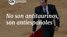 opinion_toros_movil