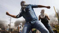 Un joven palestino lanzando piedras a las fuerzas de seguridad. (Foto: Reuters)