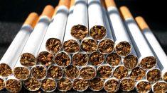 Imagen de cigarrillos (Foto: Getty)