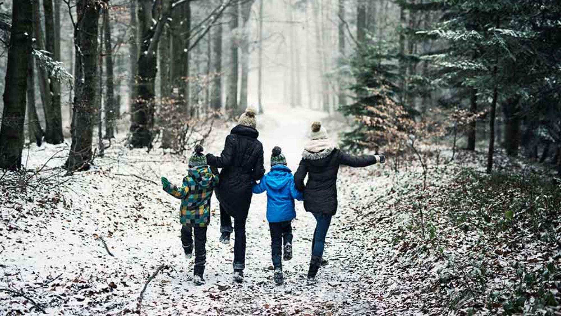 Actividades para hacer en familia durante el otoño y el invierno