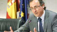 El ministro de sanidad, Alfonso Alonso (Foto: Efe)