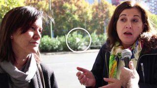 Reacciones de los conductores madrileños a la decisión de Carmena de prohibir aparcar en el centro de Madrid.