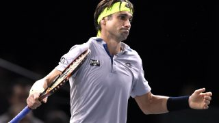 Ferrer se queda sin final en París