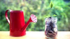El inversor debe tener clara cuál es su situación patrimonial y, a partir de ahí, diversificar su capital (Foto: GETTY).