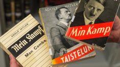 Facebook: El abuelo confunde 'Minecraft' con 'Mein Kampf'