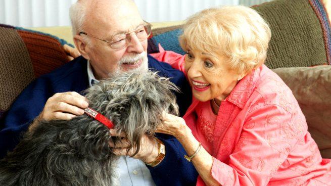 Ancianos Terapia