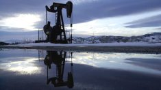 Pozo de petróleo en California (Foto: GETTY)