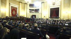 Imagen general del Senado (Foto: Efe).
