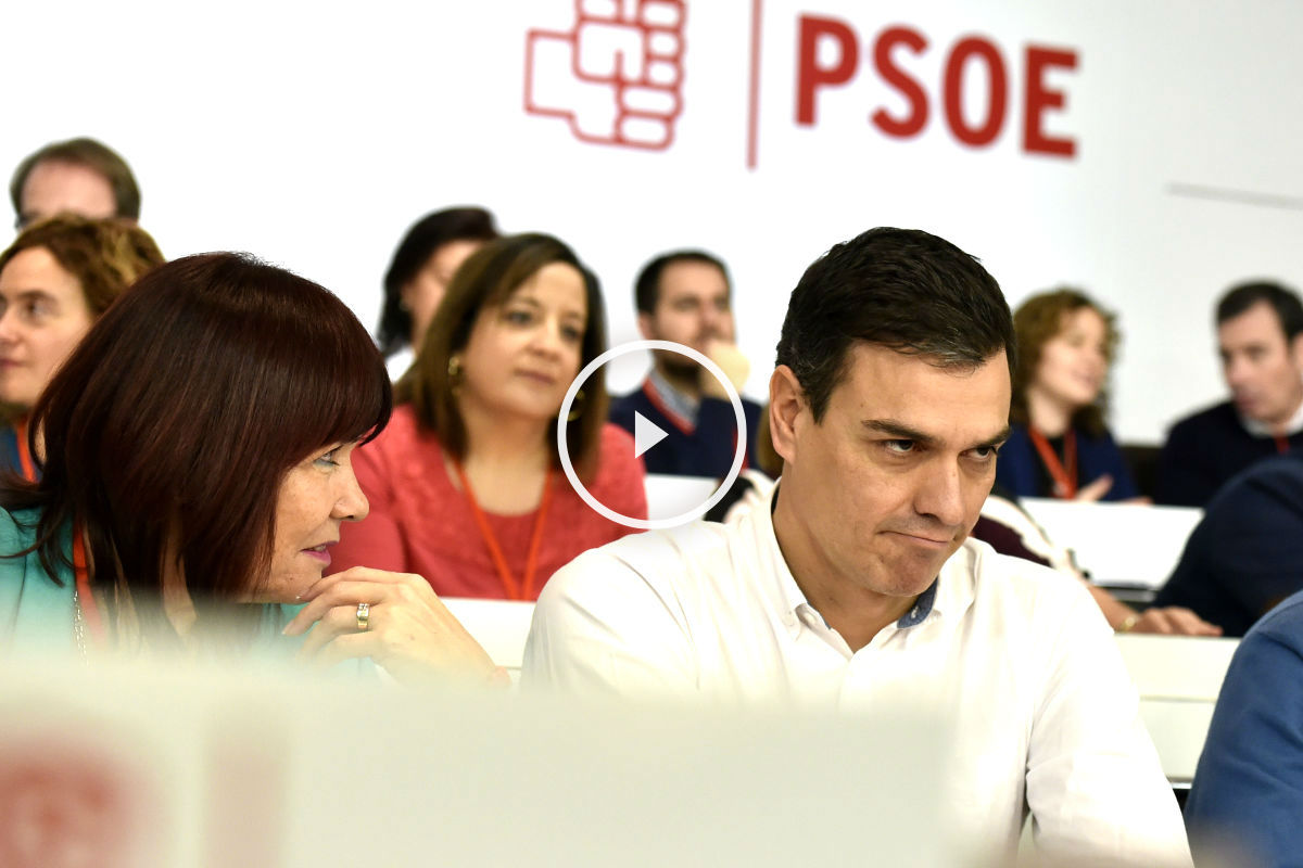 Pedro Sánchez en el Comité Federal. (Foto: AFP).