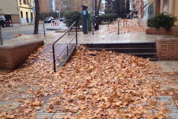 La calle Almansa, del barrio de Moncloa, cubierta por una alfombra de hojas secas