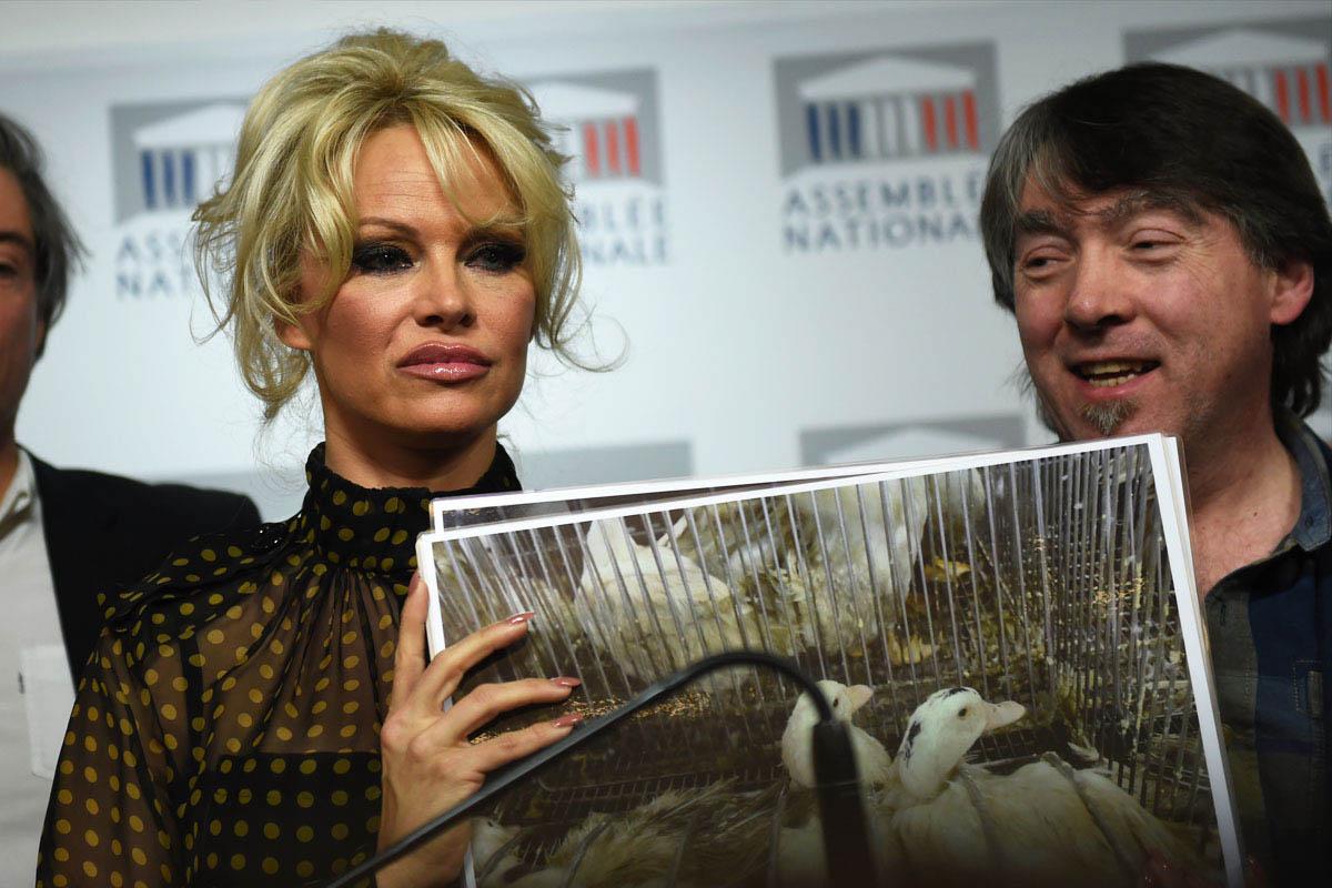 Pamela Anderson. (Foto: AFP)