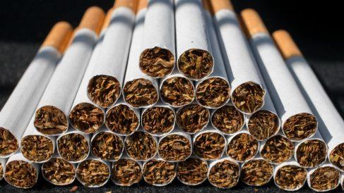 Cigarrillos apilados antes de ser empaquetados.