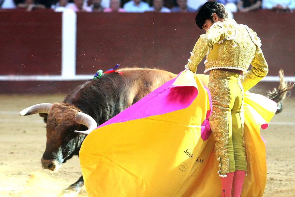 José Tomás en una imagen de archivo (Foto: AFP).