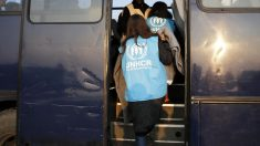Voluntarios de ACNUR marchándose de Grecia (Foto: Reuters)
