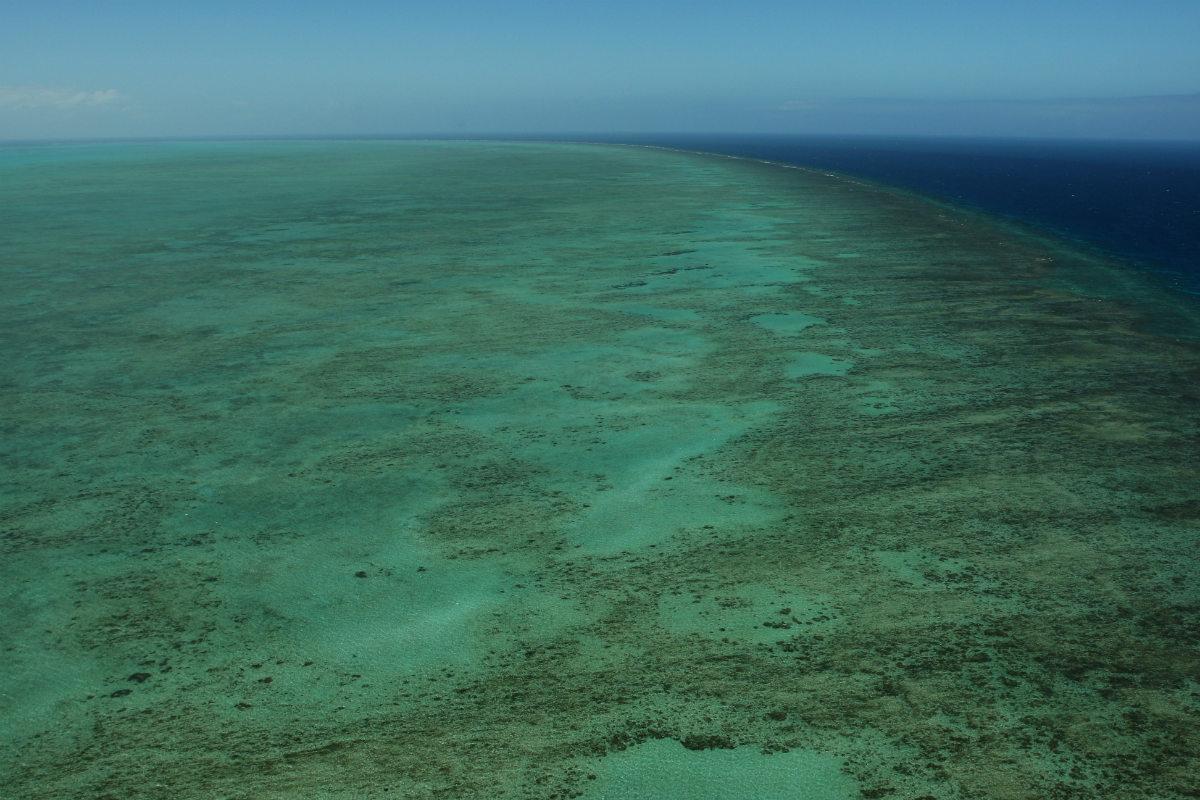 La Gran Barrera de Coral, en Australia, fue declarada Patrimonio de la Humanidad por la UNESCO en 1981. (Foto: Getty)