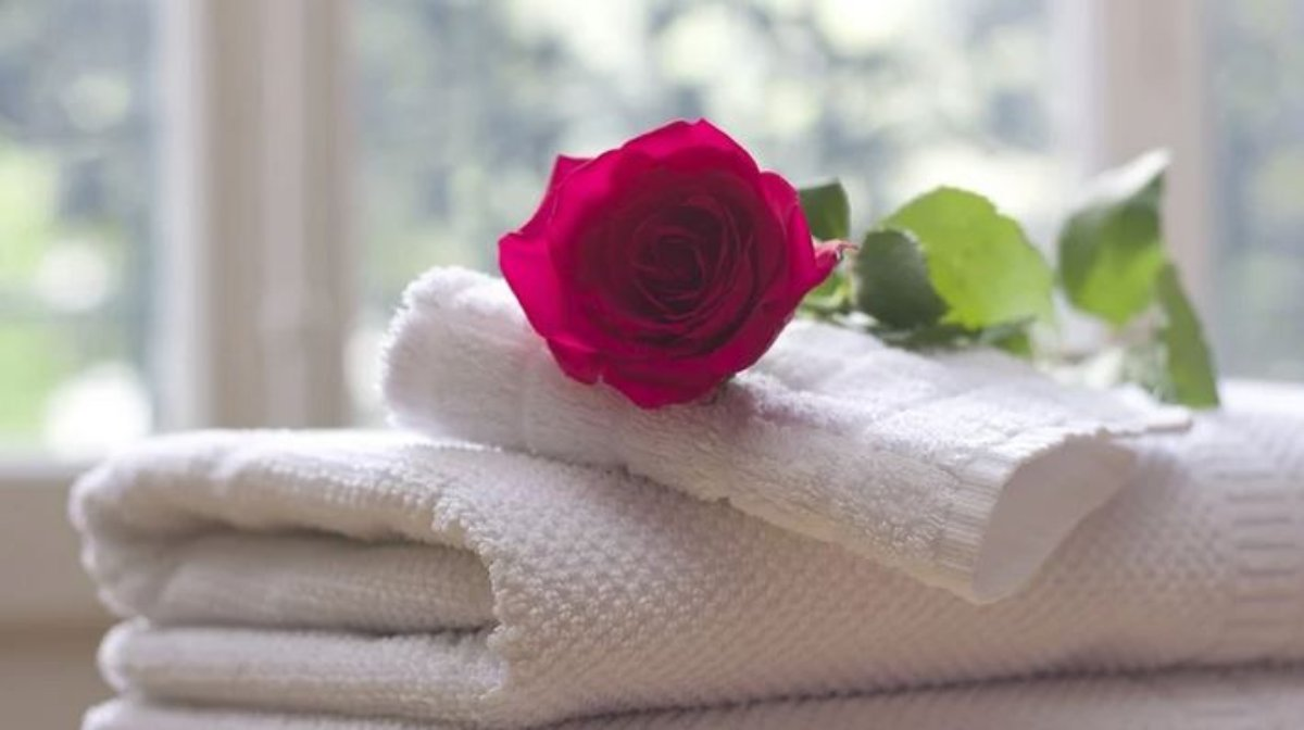 ¿Cuántas veces puedes usar una toalla antes de lavarla?