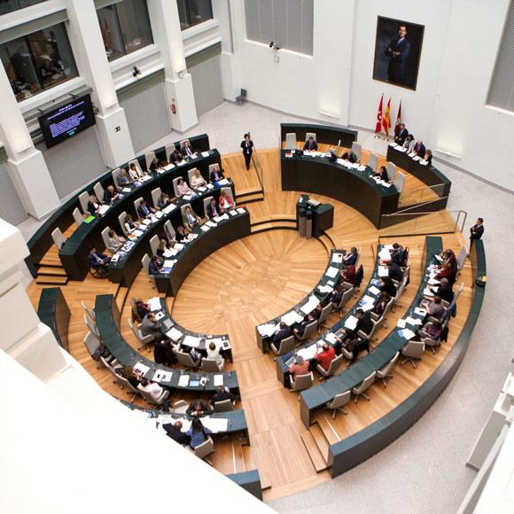 El Pleno reunido en sesión ordinaria. (Foto: Madrid)