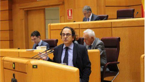 El senador del PP Luis Aznar (Foto: PP)