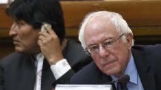 Bernie Sanders, junto a Evo Morales en el Vaticano (Foto: AFP)