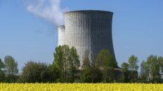 Central nuclear en Saint-Laurent-des-Eaux, Francia. (Foto: AFP)
