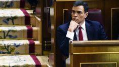 Pedro Sánchez en su escaño en el Congreso de los Diputados. (Foto: AFP)