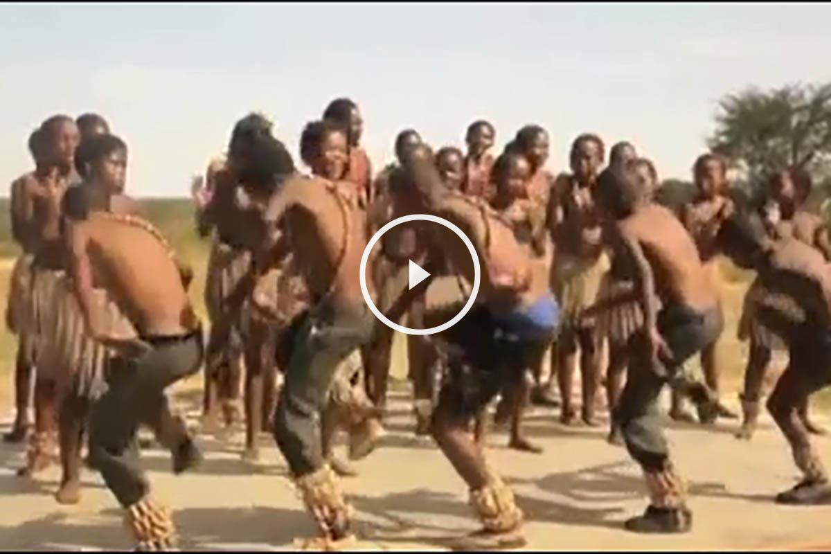 Negros flamencos