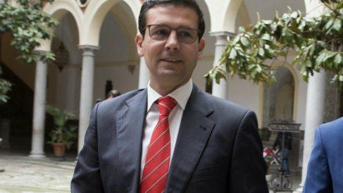 Francisco Cuenca, alcalde de Granada (Foto:EFE)