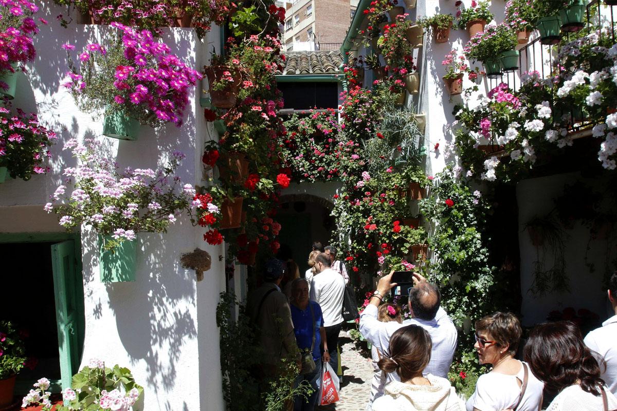 Las flores son las protagonistas del popular concurso de Rejas y Balcones que organiza el Ayuntamiento de Córdoba. (Foto: EFE)