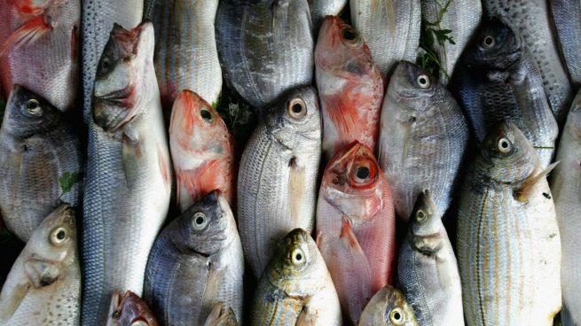 pesca-pesqueras
